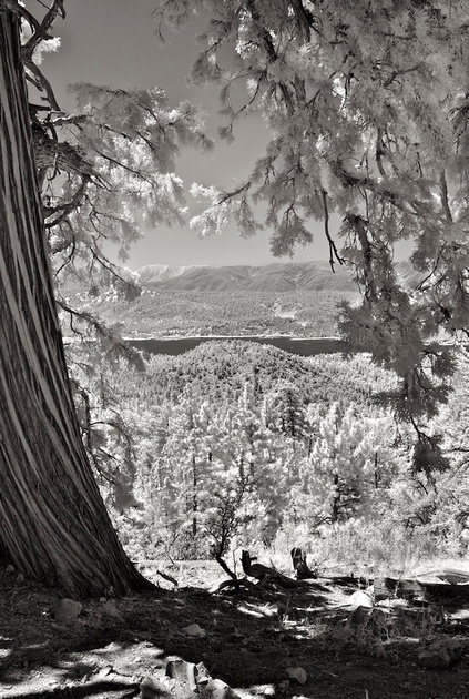 Big Bear Lake Vista from Pacific Crest Trail ­- Infrared Exposure - 2015